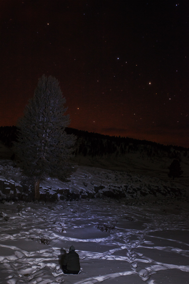 A photographer sits midst bison tracks under a clear night under the stars.